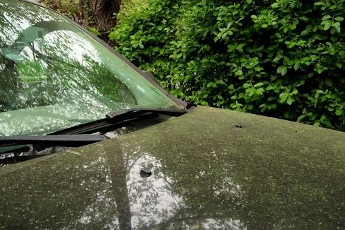車内の花粉症対策は済んでいますか!? 効果的なエアコンフィルターを選ぼう【クルマの達人になる】