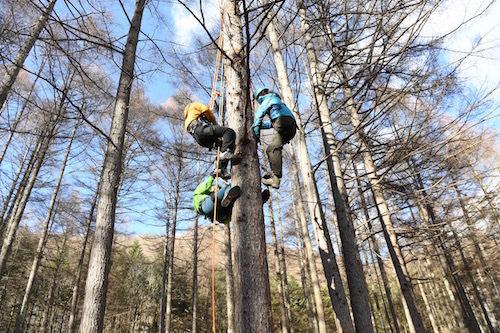 ツリークライミングはハーネスを装着するから安全に木登りができる。お子さんから大人まで楽しめるのがいい
