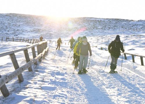 朝日を背に浴びつつ雪道を登る。雲海への期待に気持ちが高鳴る