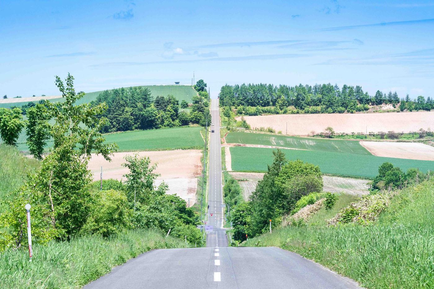 地平線まで走ってゆきたくなる道、ぜひ愛車と走りたい!